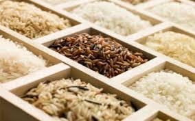 tipos de arroz 4