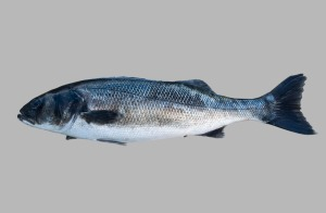 pescado lubina (2)